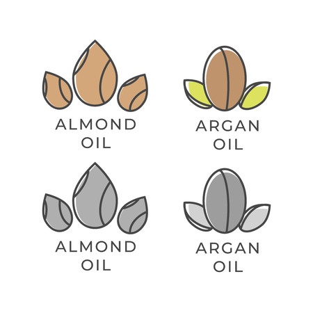 Almond and argan oil icon. Almond oil. Argan oil vector Vettoriali