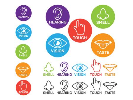 Conjunto de iconos de vector de cinco sentidos blanco aislado. Oler y ver, sentir y escuchar la ilustración. Ilustración de vector