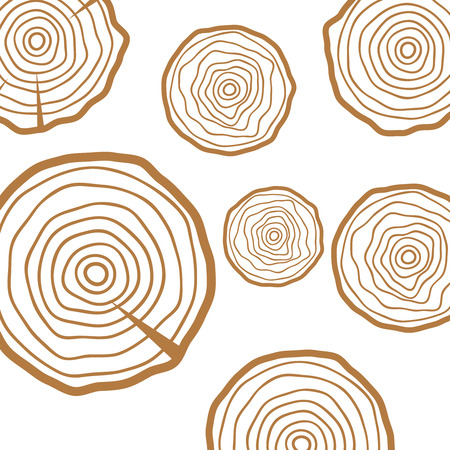 Cross section of the tree. Abstract age annual circle tree background