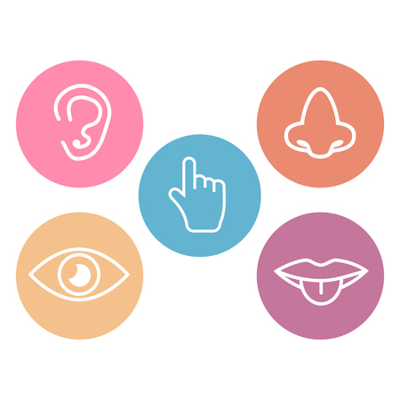 Five senses icons. 5 senses symbols