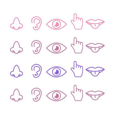 Sight, smell, hearing, touch, taste icons vector. Five senses icon set