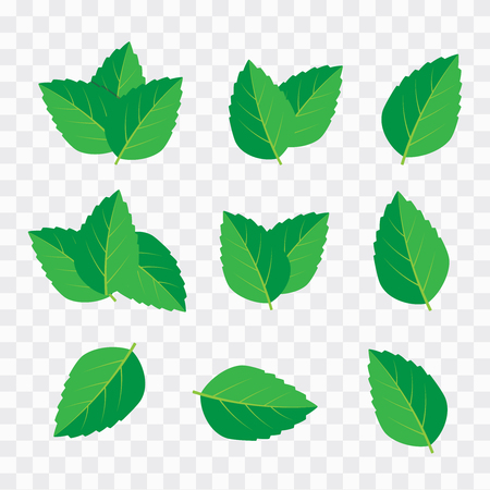 Vector menthol healthy aroma. Mint leaves vector logo Stock Vector - 117636631