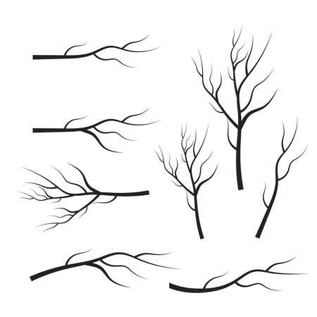 vector set dry tree branches. Leaves, swirls and floral elements