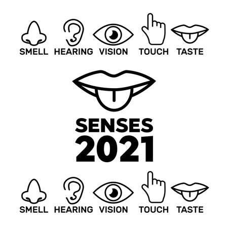 Sight, smell, hearing, touch, taste icons vector. Five senses icon set  イラスト・ベクター素材