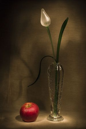 Glass flower and apple photo