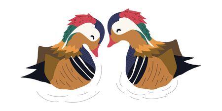 hand drawn couple mandarin ducks vector illustration. creative  animal designs for fabric, wrapping, wallpaper, textile, apparel.