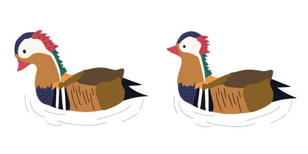 hand drawn two mandarin ducks vector illustration. creative  animal designs for fabric, wrapping, wallpaper, textile, apparel.