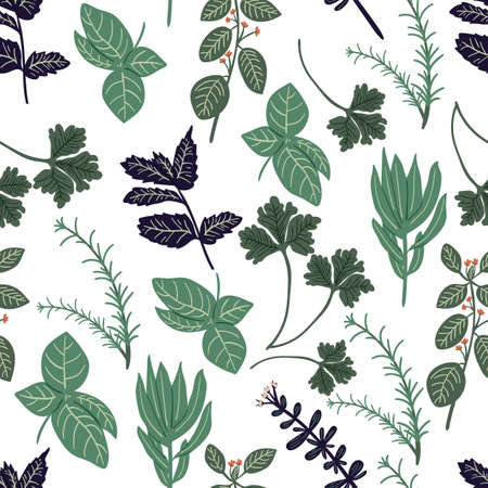 floral seamless pattern with hand drawn herb rosemary,parsley,mint,sage,basil,thyme,oregano. Creative herb texture for fabric, wrapping, textile, wallpaper, apparel. Vector illustration