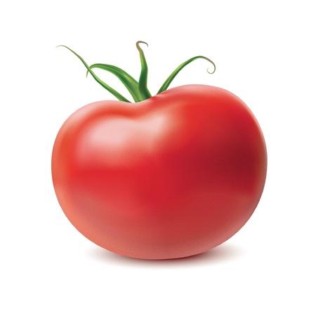Tomato isolated on white background. Vector Illustration