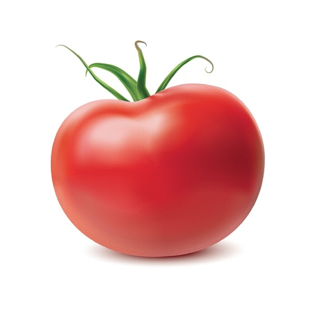 vegetable cook: Tomato isolated on white background. Vector Illustration