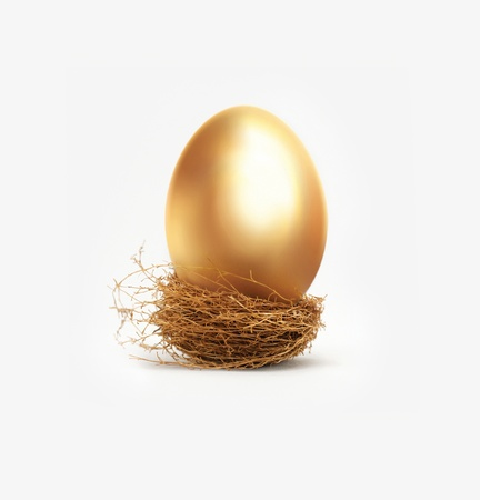 nest egg: Golden egg in nest