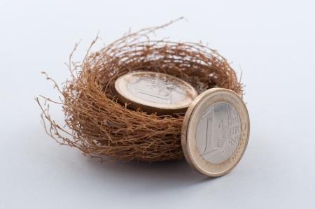 nestegg: Euro coins in nest Stock Photo