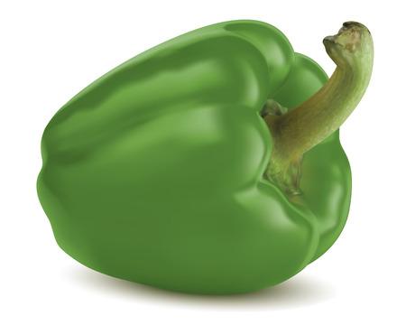 Paprika vert isolé Vector illustration Vecteurs