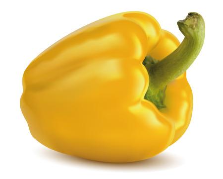Paprika jaune isolé Vector illustration Vecteurs