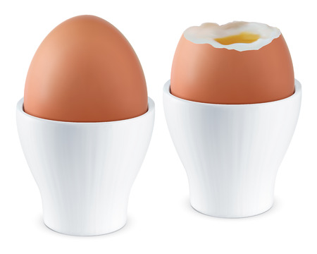 boiled: Boiled Egg in Eggcup  Vector illustration