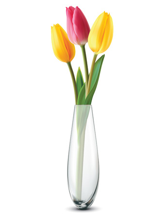white tulip: Bouquet of tulips in a glass vase on a white. Vector illustration Illustration