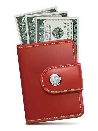 tarjeta visa: Carpeta con el dinero, aislados. Ilustración vectorial