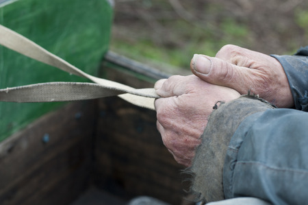 rancher: Hands of an old man holding reins on his horsecart.