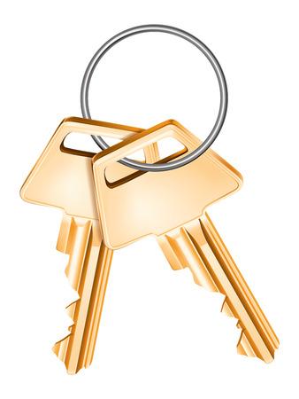 passkey: Golden keys, isolated. Vector illustration Illustration