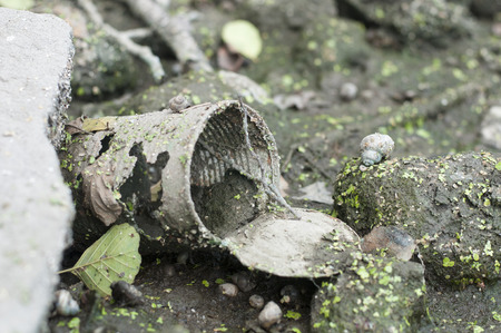 hazardous: Rusty tin dumped in swampy