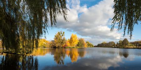 unspoilt: Autumn woodland scene in the Ukrainian Lake