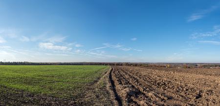 half: Autumn field plowed half Stock Photo
