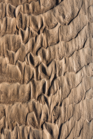 gritty: Traces of flowing water on the sand