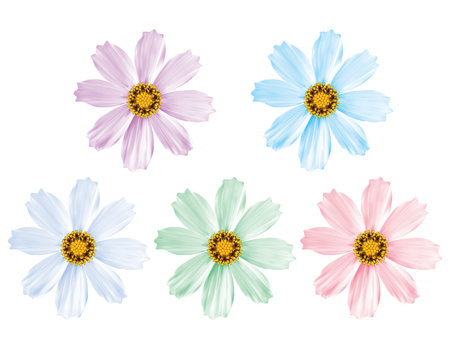 Daisy flowers set isolated. Vector 3d illustration Ilustração