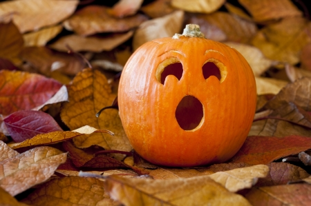Jack-o-lantern with a surprised expression with colorful fall leaves photo