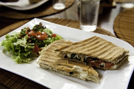 Grilled Vegetable Panini with Salad on a White Plate photo