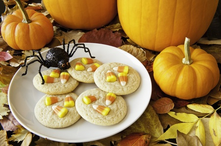 Spider ready to snack on a plate of cookies decorated with candy corns Stock Photo