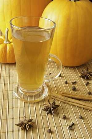 Mug of cider with pumpkins and spices
