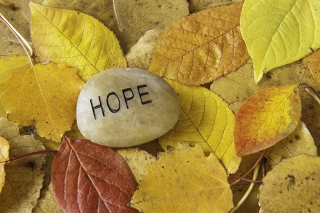 hope: Hope message rock with colorful fall leaves Stock Photo