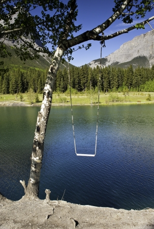 Tree swing over a mountain lake on a sunny day