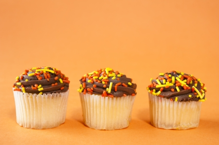 White cupcakes with chocolate icing and sprinkles photo