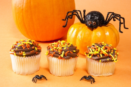 Fall cupcakes with pumpkins and Halloween spiders