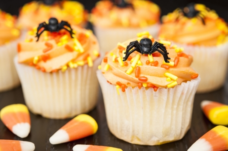 Halloween cupcakes with spiders and candy corns photo