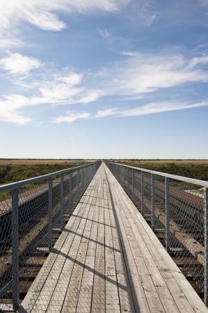 longest: Skytrail bridge in Outlook, Saskatchewan - the longest pedestrian bridge in Canada