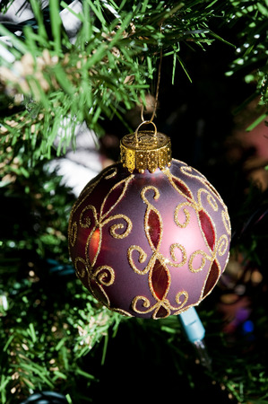 Red and gold Christmas ball ornament hangs on a tree