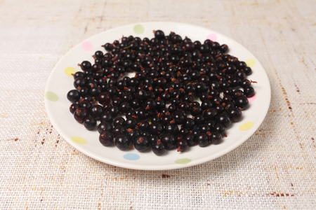black currants: Black currants in a bowl on table