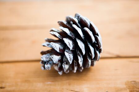 One pine cone on the wooden background, flat lay