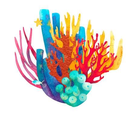 Hand drawn coral reef decorative composition. Beautiful watercolor bright red, blue and yellow corals, yellow starfish, blue fish, red aglae, underwater sea life on white background