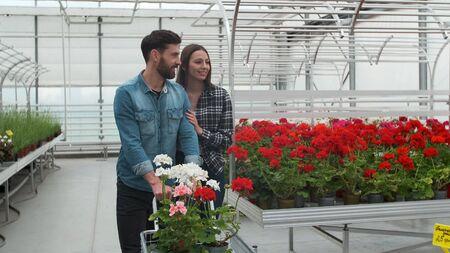 Ð junges Paar Blumen kaufen in einem sonnendurchfluteten Gartenladen. 4K. Coupe-Shopping für Zierpflanzen auf einem sonnigen floristischen Gewächshausmarkt. Haus- und Gartenkonzept.