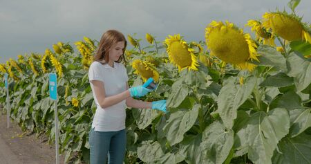 Biologist or agronomist, takes analyzes in the fields.