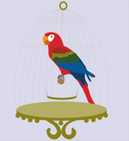 Colorful parrot in cage Vector