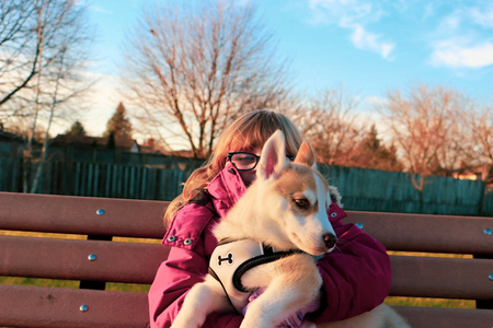 Little girl aged 3 to 5 holds a puppy on her arms, siberian husky Stock fotó