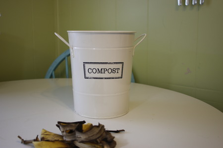 a labelled compost bucket with banana peels in front ready to be sorted. theme of sorting your rubbish into proper bins.