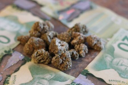 Marijuana Buds on Money with a lighter and rolling papers. Marijuana on Canadian Money with a lighter and rolling papers