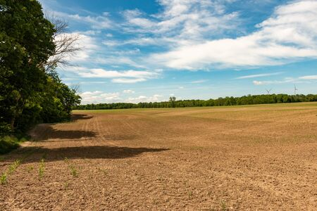 Farm land, Ontario, Canada. View of freshly planted fields.. 写真素材