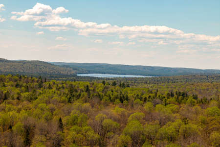 scenic views of algonquin provincial park in the spring